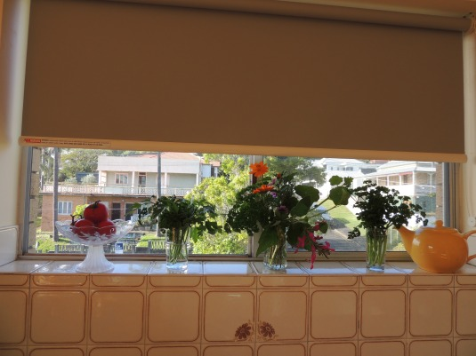 My kitchen window sill