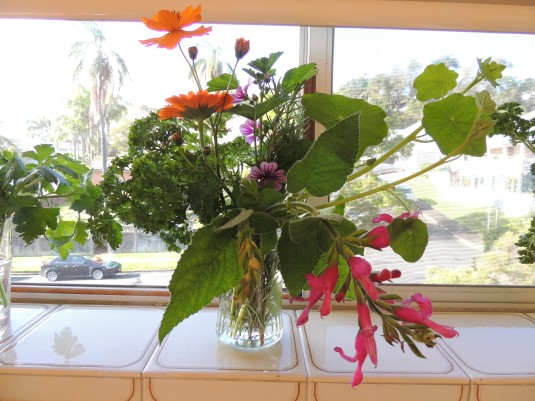 Herbs and flowers from the allotment