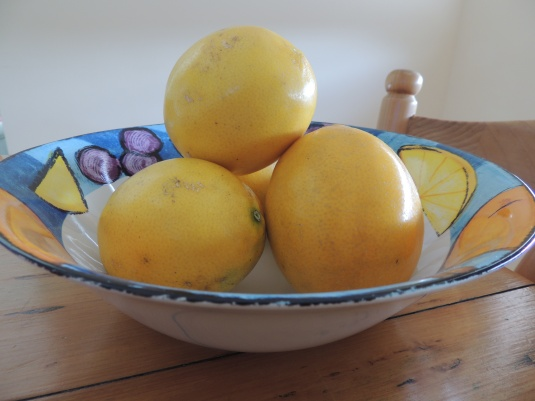 Lemons from Maria and Peter's tree