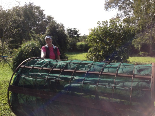 Sue with the compost roller