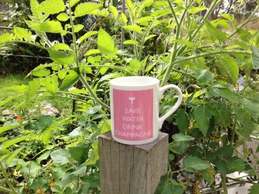 Nigel's mug